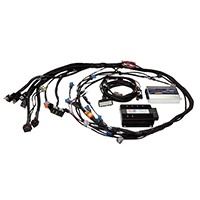 "WBC1 - Single Channel CAN O2 Wideband Controller Terminated Harness Upgrade Kit  Includes Elite CAN Cable DTM4 to 8 pin Black Tyco - 12""/300mm, one sensor and weld-on bung"
