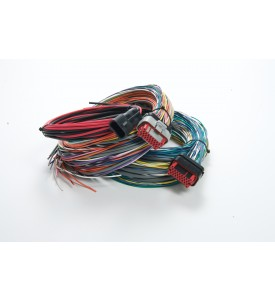 TEC-3 Unterminated Harness  6'                                                   For ECU #33000