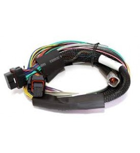 Elite 1500 - 2.5m (8 ft) Basic Universal Wire-in Harness Only (no relays or fuses)