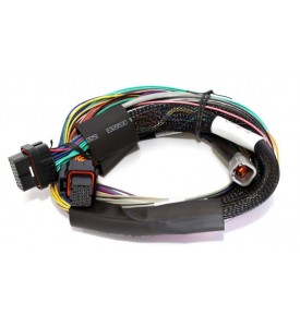 Elite 2000 - 2.5m (8 ft) Basic Universal Wire-in Harness Only (no relays or fuses)