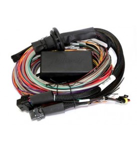 Elite 2000 - 2.5m (8 ft) Premium Universal Wire-in Harness Only Includes firewall grommet, moulded 6 power circuit Haltech fuse box & lid. Includes 4 relays & 7 fuses (includes pins for the 2 spare power circuits)