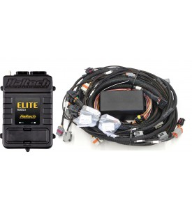 Elite 2000 GM GEN IV LSx (LS2/LS3 etc) non DBW Terminated Harness ECU Kit WBC1/2 CAN O2 Wideband Controller ready (Controller and sensor(s) not included)  Suits factory EV6 injector connectors