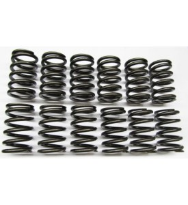 Single Valve Springs - Heavy Duty Street - M30 (early)