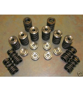 Heavy Duty Dual Street and Mild Race Valve Springs. Good for up to 8000 RPM  M10 and M30 Heads.