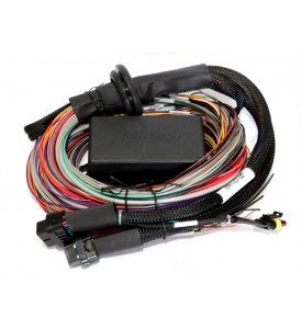 Haltech Elite 1500 Plug 'n' Play Parallel Adaptor Harness Only - Dodge Neon SRT4 2003-2005