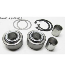 Replacement Spherical Bearing Kit for IE Camber Plates